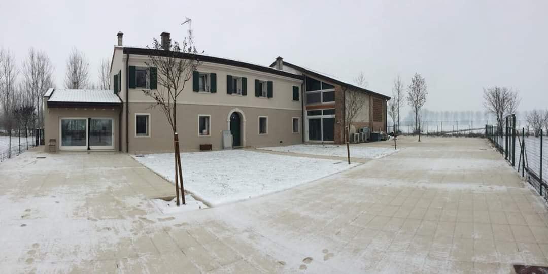 Corte Tosoni centro cinofilo