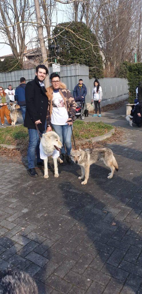 Monica Spataro cane Lupo Cecoslovacco Italia al raduno di Moon & Shadow a Ponte Tardo Parma